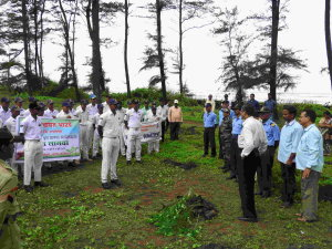 NCC Tree Plantation