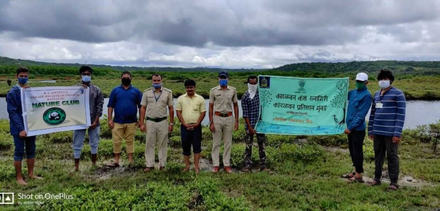 kandal-forest-protection-and-preservation